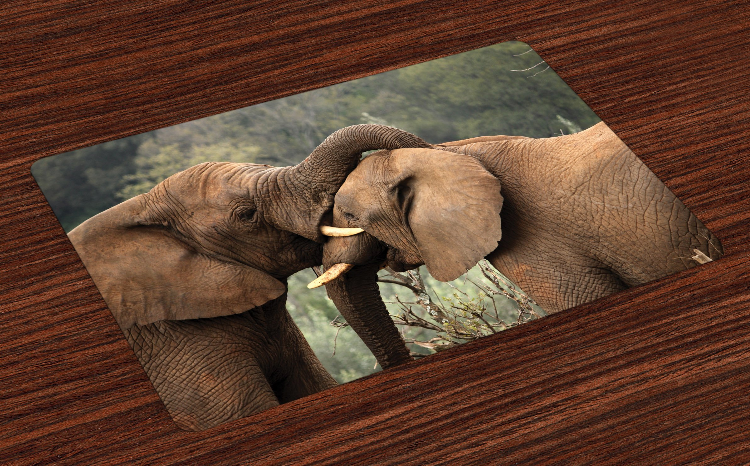 Ambesonne Safari Place Mats Set of 4, Two Wild Savannah Elephants Wrestling Cute Nature Icons South African Animals Photo, Washable Fabric Placemats for Dining Room Kitchen Table Decor, Brown Green