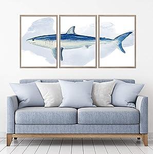 Mako Shark Watercolour Set of 3 Wall Art Home Decor Picture Prints