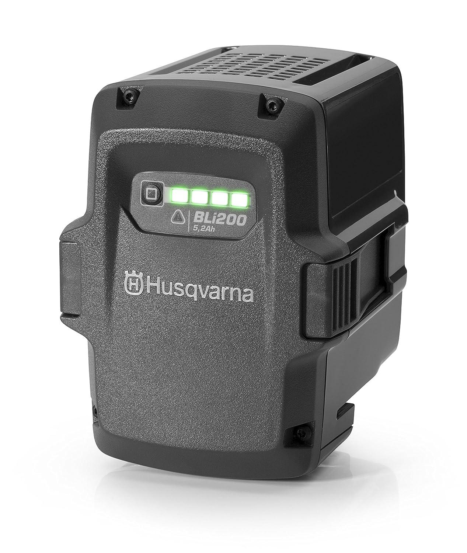 ハスクバーナ バッテリーチェンソー用 バッテリー BLi200 967091901 B01NC0TPKD