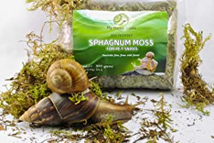 Dried Green Sphagnum Moss - Capacity 600 Cubic inches, Weight 10 oz - Great for Pet Land/Garden Snails or Reptile