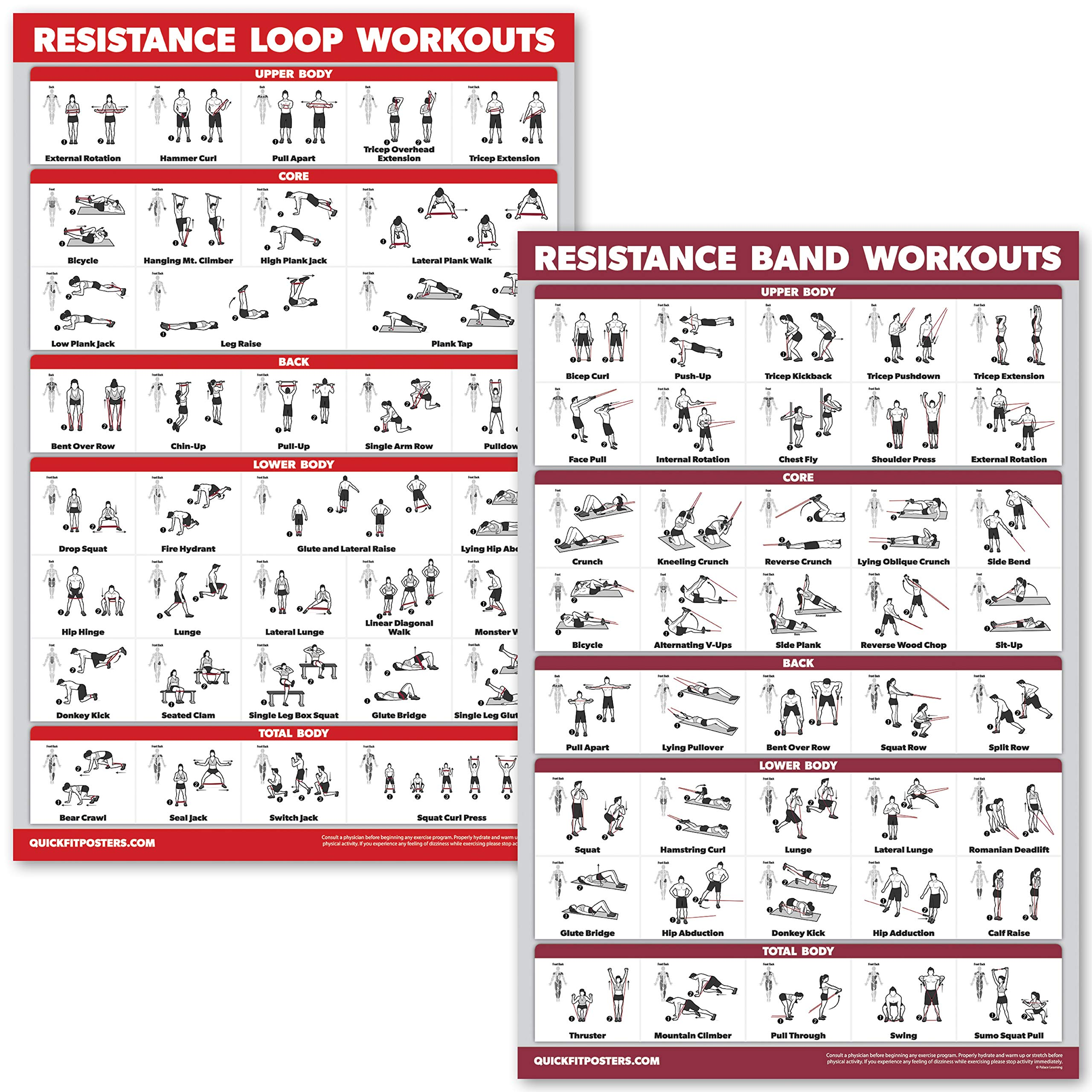 QuickFit 2 Pack – Resistance Bands and Resistance Loops Workout Posters – Set of 2 Laminated Charts – Resistance Band…