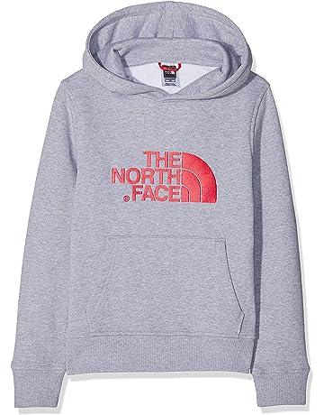 b411f6fe THE NORTH FACE Children's Youth Drew Peak Hoodie