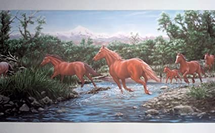 Wild Horses Wallpaper Border - Horse Crossing Stream