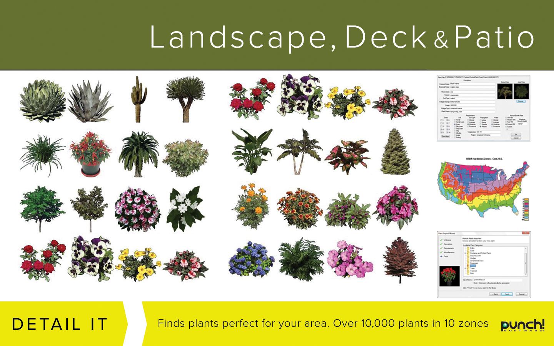 Amazon.com: Punch! Landscape, Deck and Patio Design v19 for Windows ...