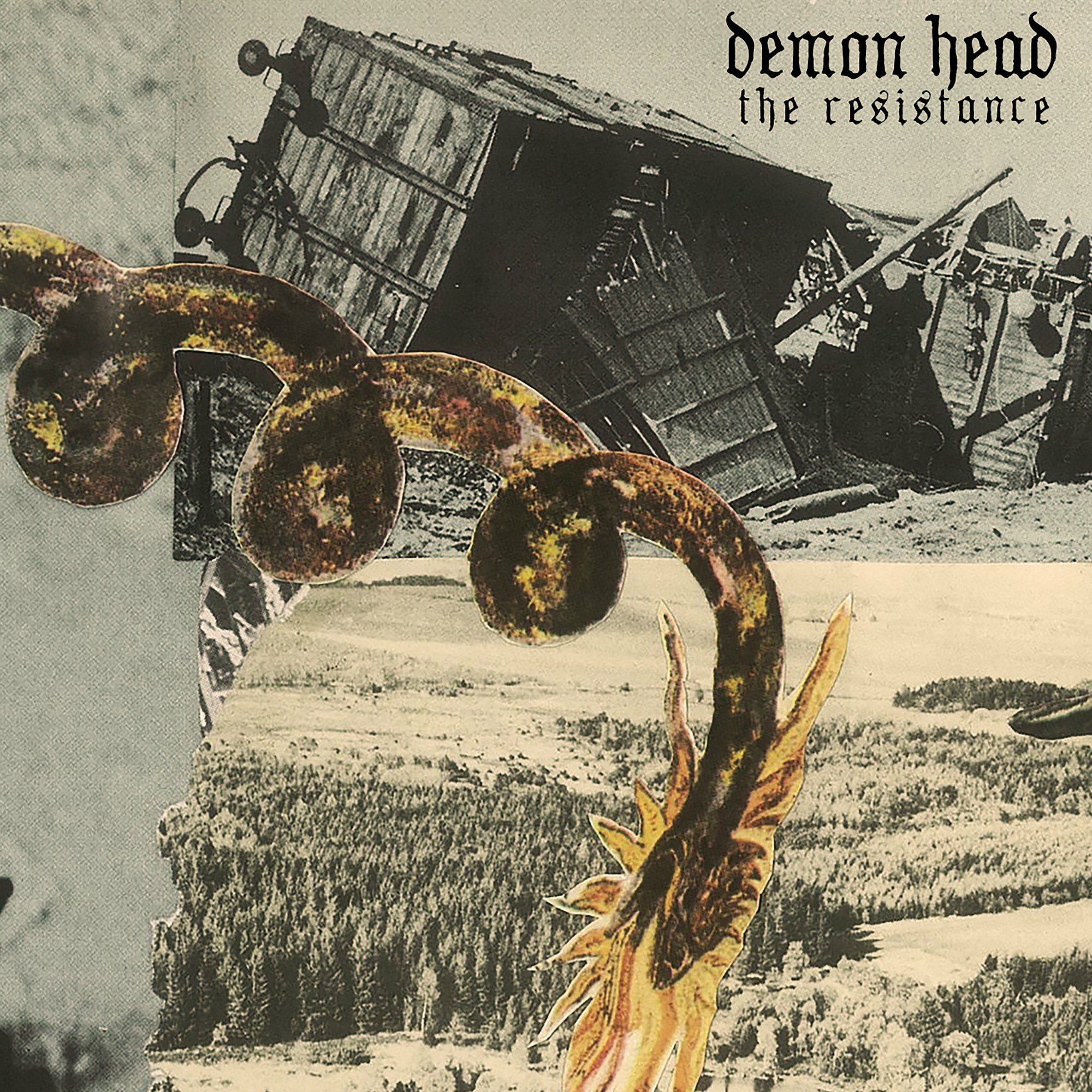 Cassette : Demon Head - Resistance (7 Inch Single)
