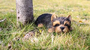 Hi- Line Gift 87710-M Yorkshire Terrier Puppy Sleeping Pet Pals Statue