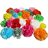 Use4Party Tissue Paper Pom Poms - Set of 30 Pcs - Pre Folded Paper Decoration for Party Wedding Birthday Bridal Baby Showers Nursery Anniversary - 6 8 10 Inch - 10 Mixed Colors