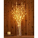 Hairui Lighted Artificial Twig Birch Tree Branch with Fairy Lights 32IN 100 LED Battery Operated Lighted White Willow Branch