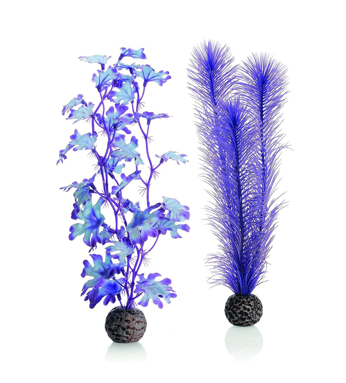 biOrb Plante colorée violette Moyenne pour Aquarium 46080.0