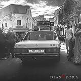 Diaspora Ltd. Pack