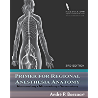 Primer for Regional Anesthesia Anatomy: Macroanatomy, Microanatomy and Sonoanatomy (English Edition)