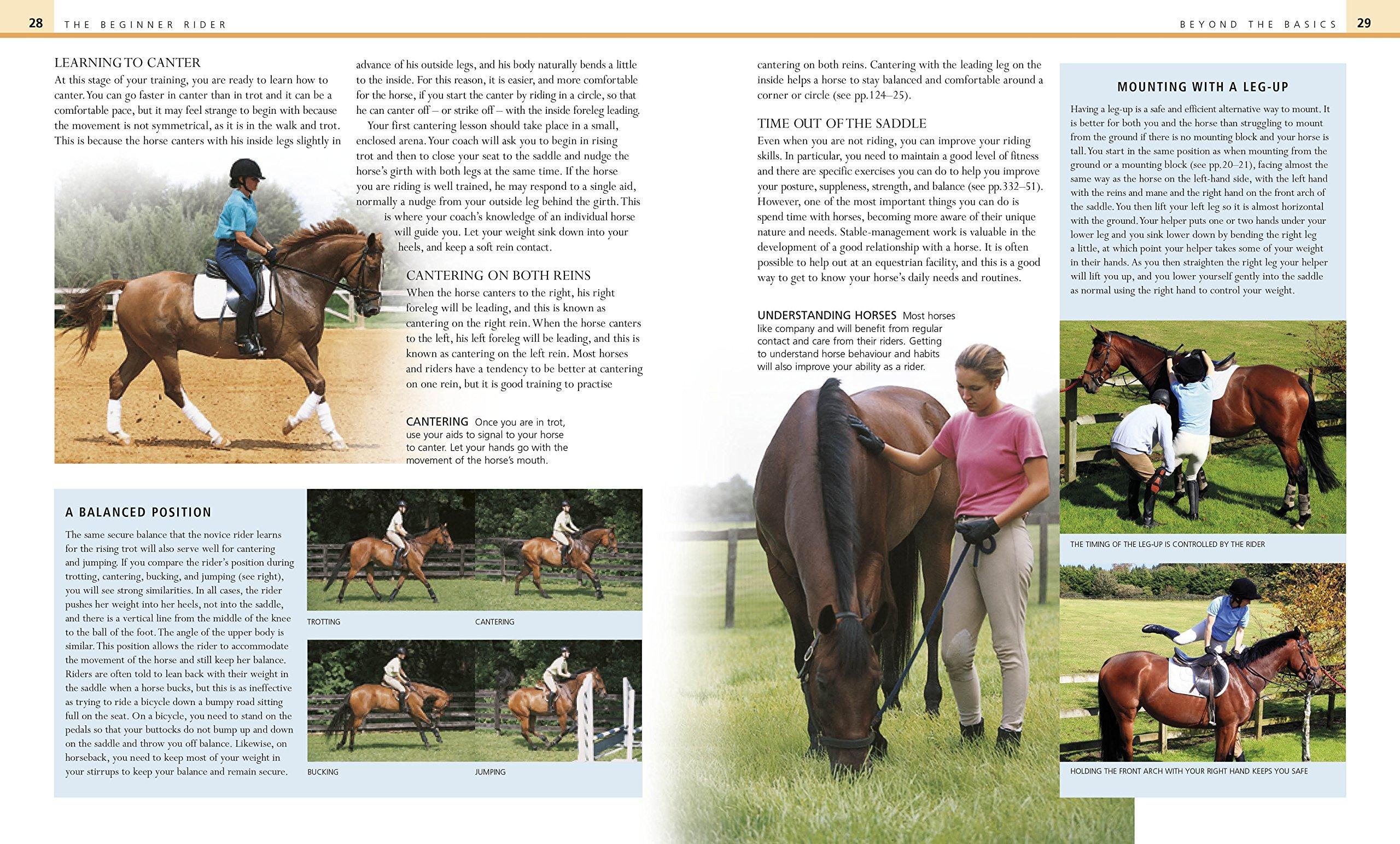 Complete Horse Riding Manual: Amazon.co.uk: William Micklem: 8601200498714:  Books