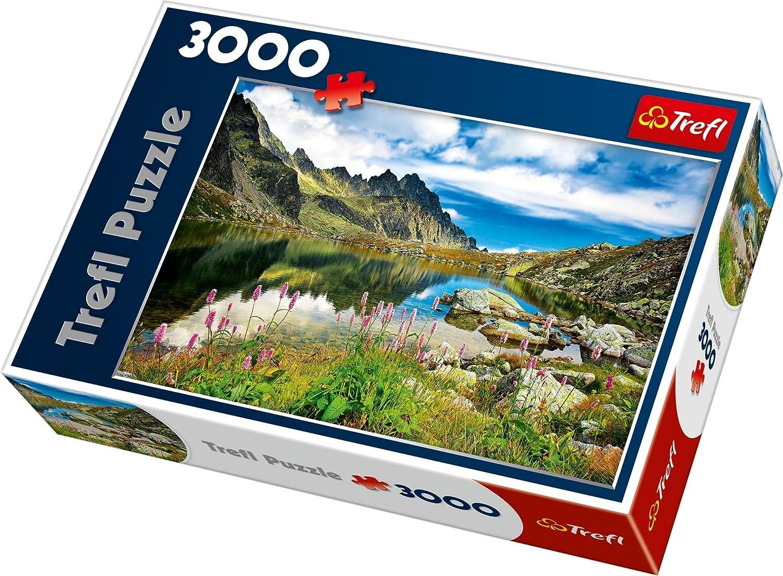 【信頼】 3000ピース ジグソーパズル タトラ Mountains, Trefl タトラ スロバキア湖 Pond in Tatra Tatra Mountains, Slovakia 85×116cm 33031 B00BQDNC2I, 鎌倉清雅堂 鎚起<銅錫銀>器:9a5a809d --- a0267596.xsph.ru