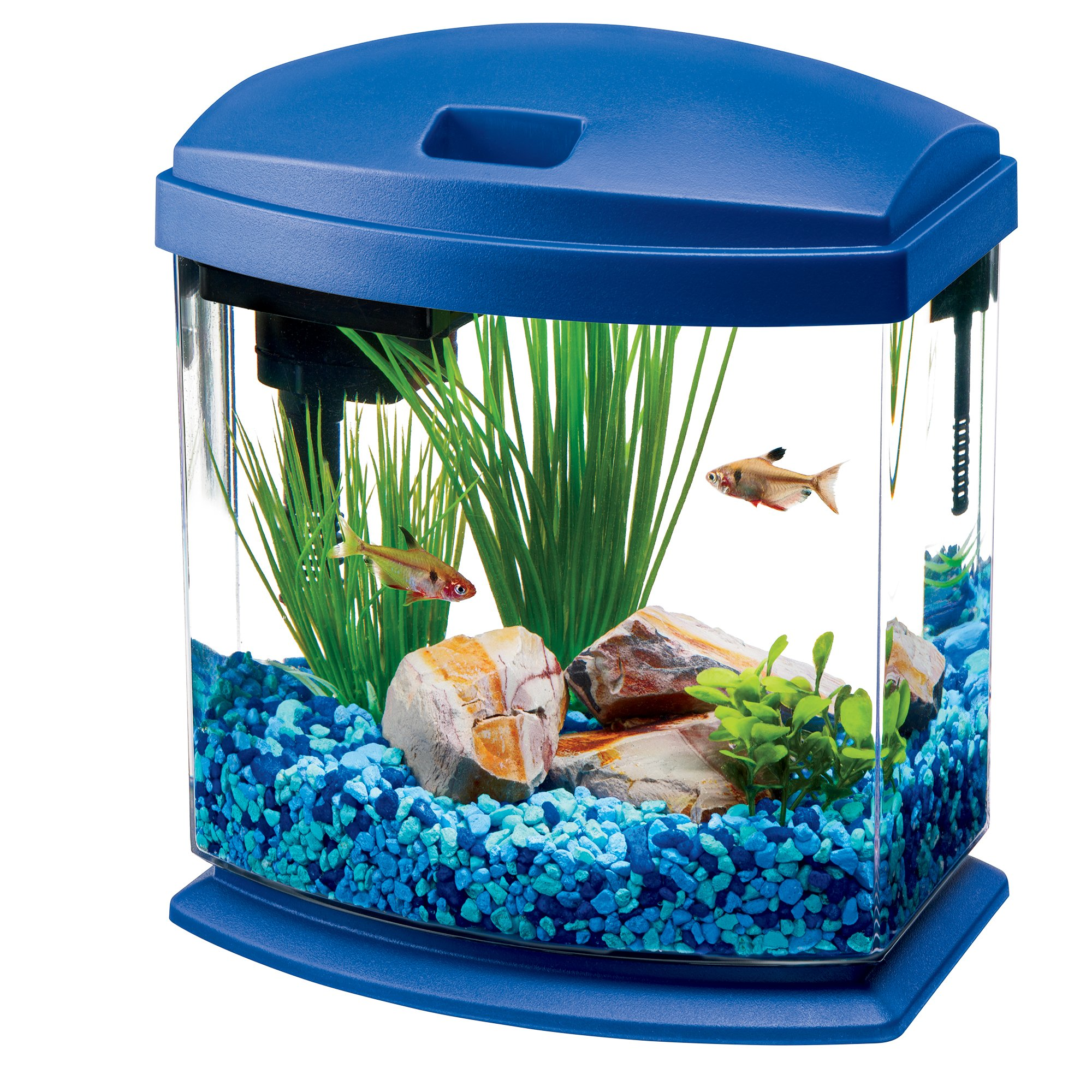 Using Shop Lights For Aquarium: Aqueon LED MiniBow Aquarium Starter Kits With LED Lighting