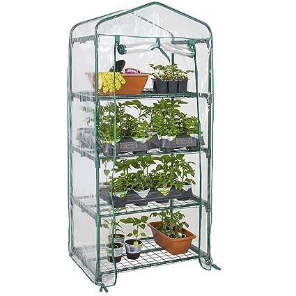 Amazon.com: Producto seleccionado: invernadero miniatura de ...