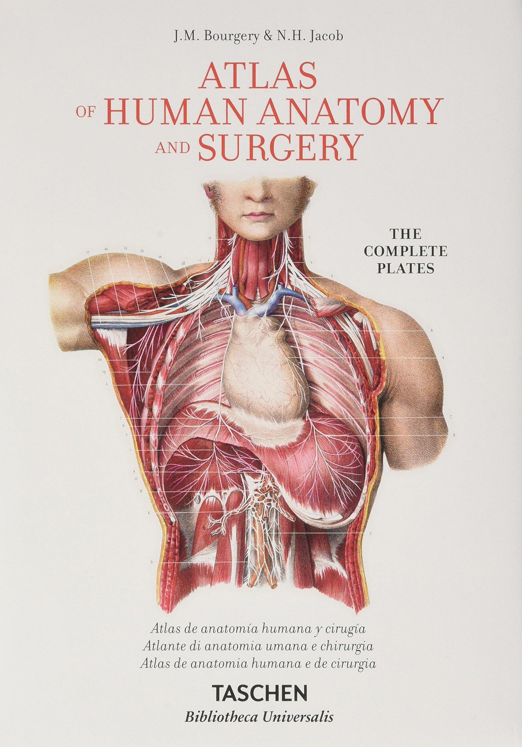 Magnífico Middlesex La Anatomía Y La Fisiología De La Universidad ...