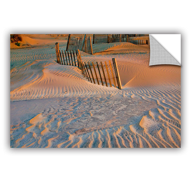 ArtWall Steve Ainsworths Dune Patterns II Art Appeelz Removable Graphic Wall Art 24 x 36