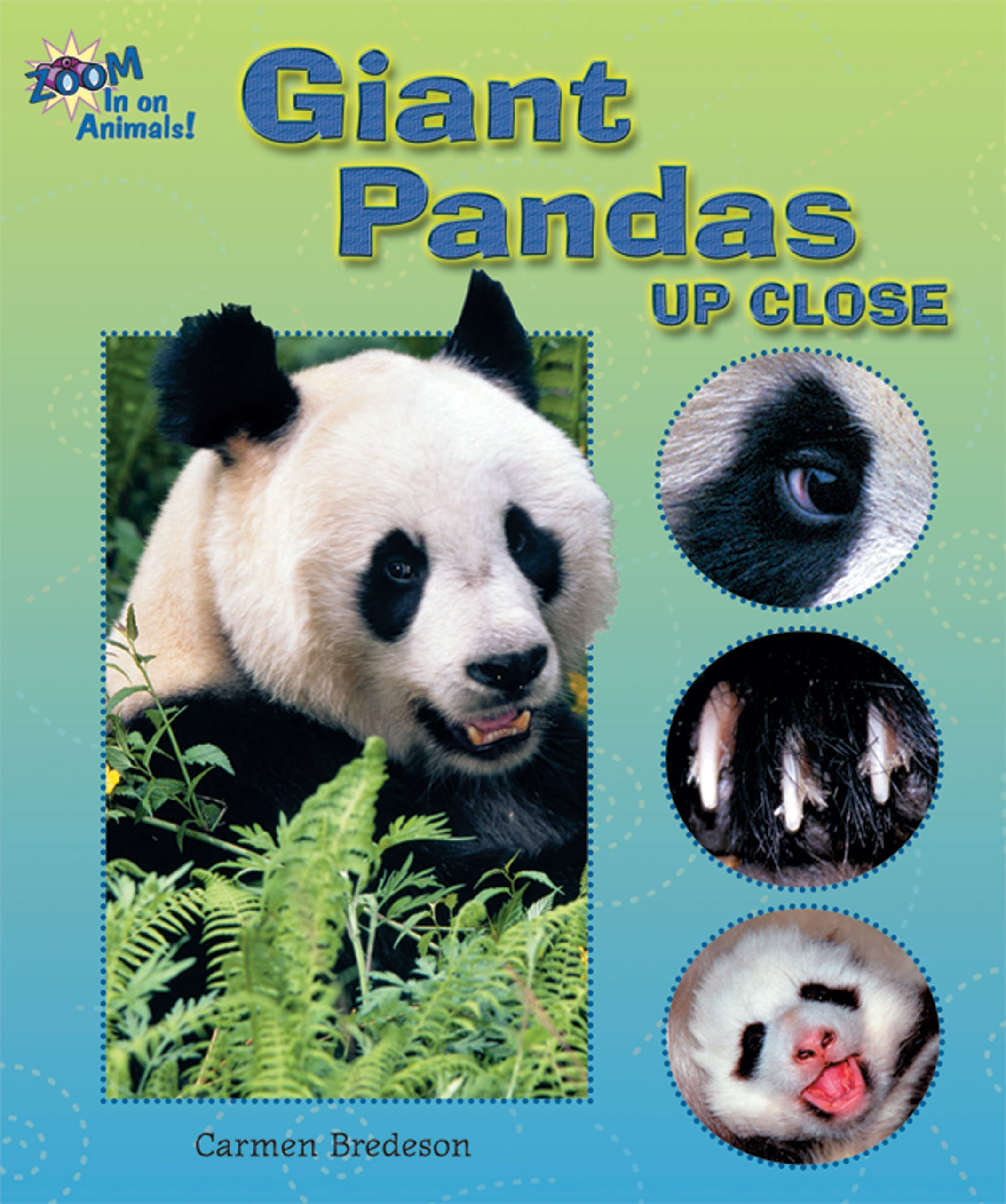 Download Giant Pandas Up Close (Zoom in on Animals!) ebook