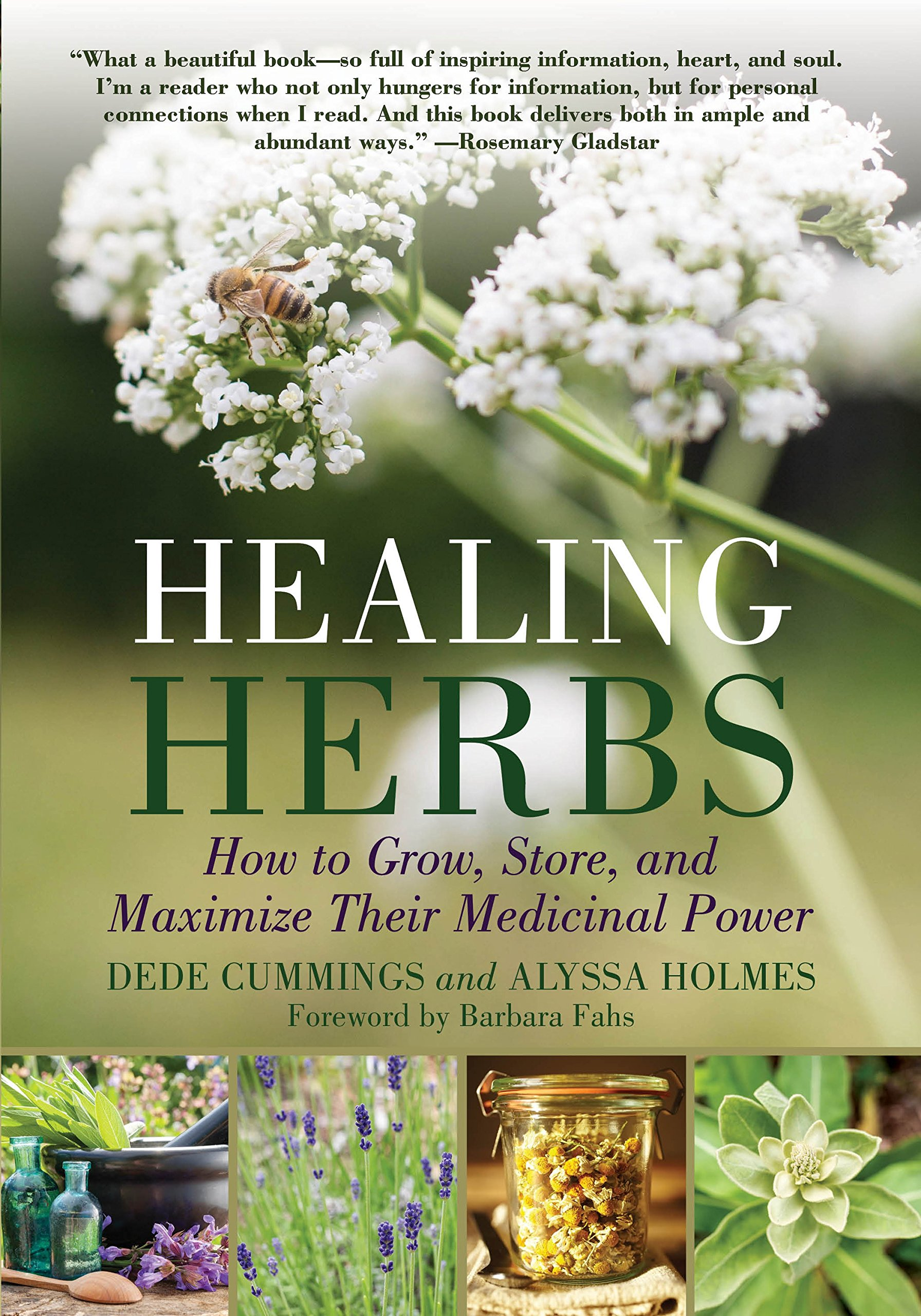 Download Healing Herbs: How to Grow, Store, and Maximize Their Medicinal Power pdf