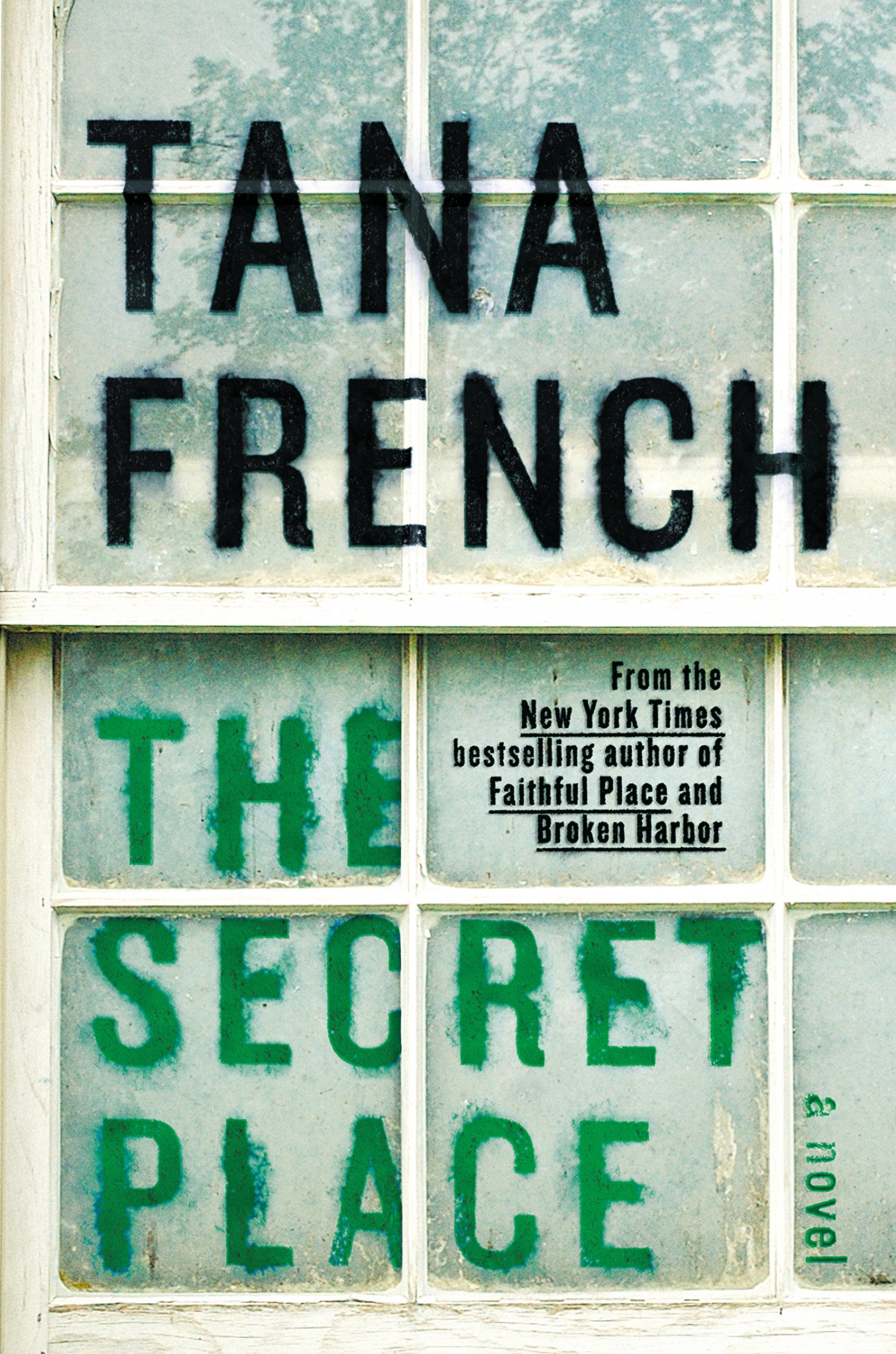 Read Online The Secret Place: Dublin Murder Squad PDF