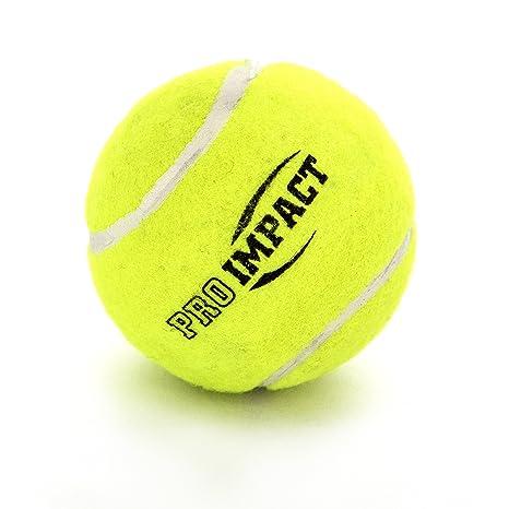 Pro impacto pesado Cricket pelotas de tenis (6 bolas): Amazon.es ...
