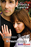 Dangerous Proposal [The Pinnacles of Power] (BookStrand Publishing Mainstream Romance)