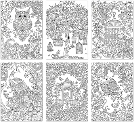 - Living In Color Art Therapy Coloring Pages 6 Sheets/Pkg-Tropicana  Imports-Living In Color Art Therapy Coloring Pages. Perfect For Expressing  Your Artistically! Use Colored Pencils Or Markers To Brin: Amazon.ca: Home  & Kitchen