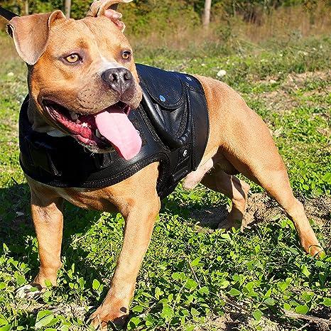 Piel perro chaqueta abrigo cuello Walking Arnés Labrador Boxer ...