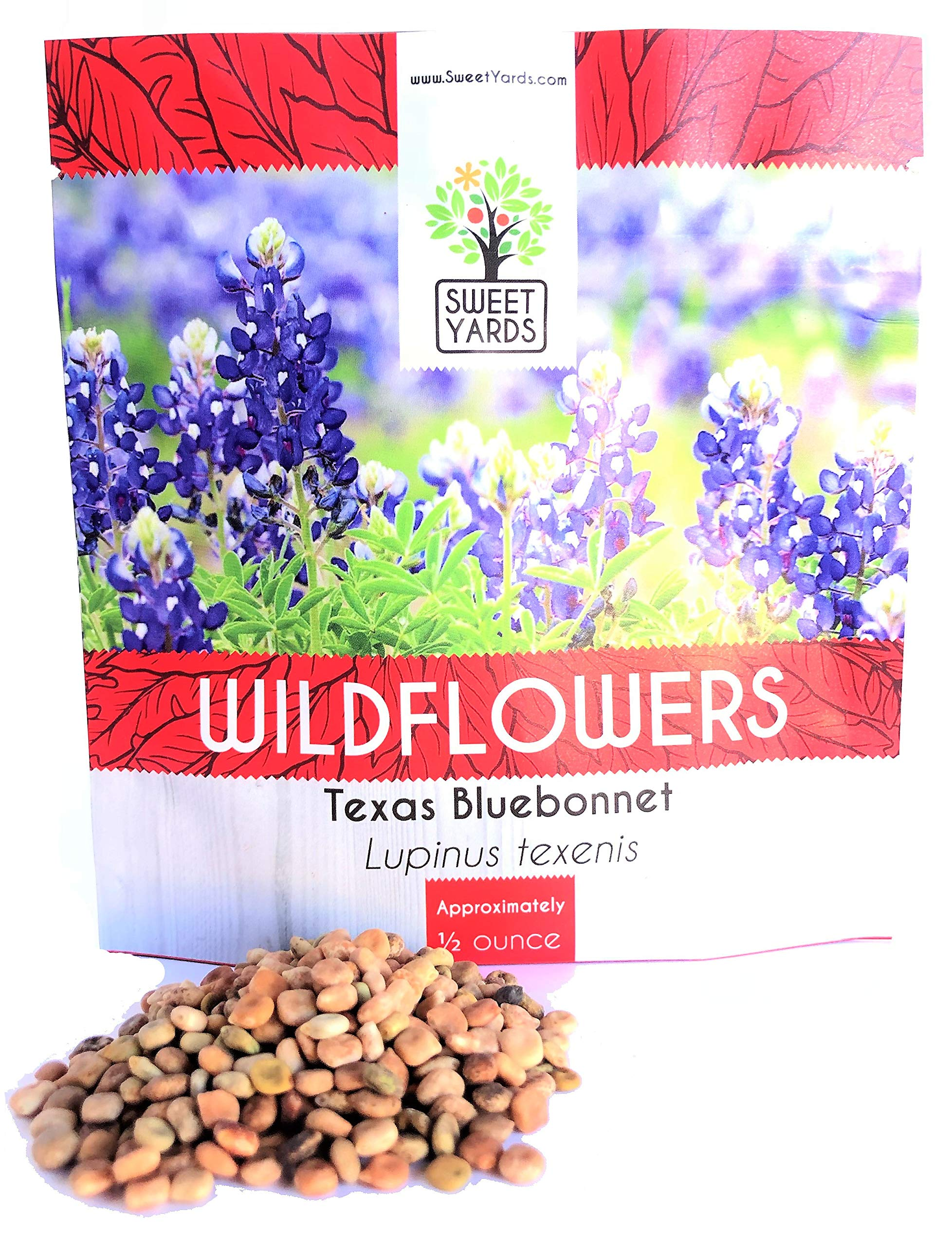 Texas Bluebonnet Wildflower Seeds - Bulk 1/2 Ounce Packet - Over 500 Native Seeds - Texas State Flower! by Sweet Yards Seed Co.