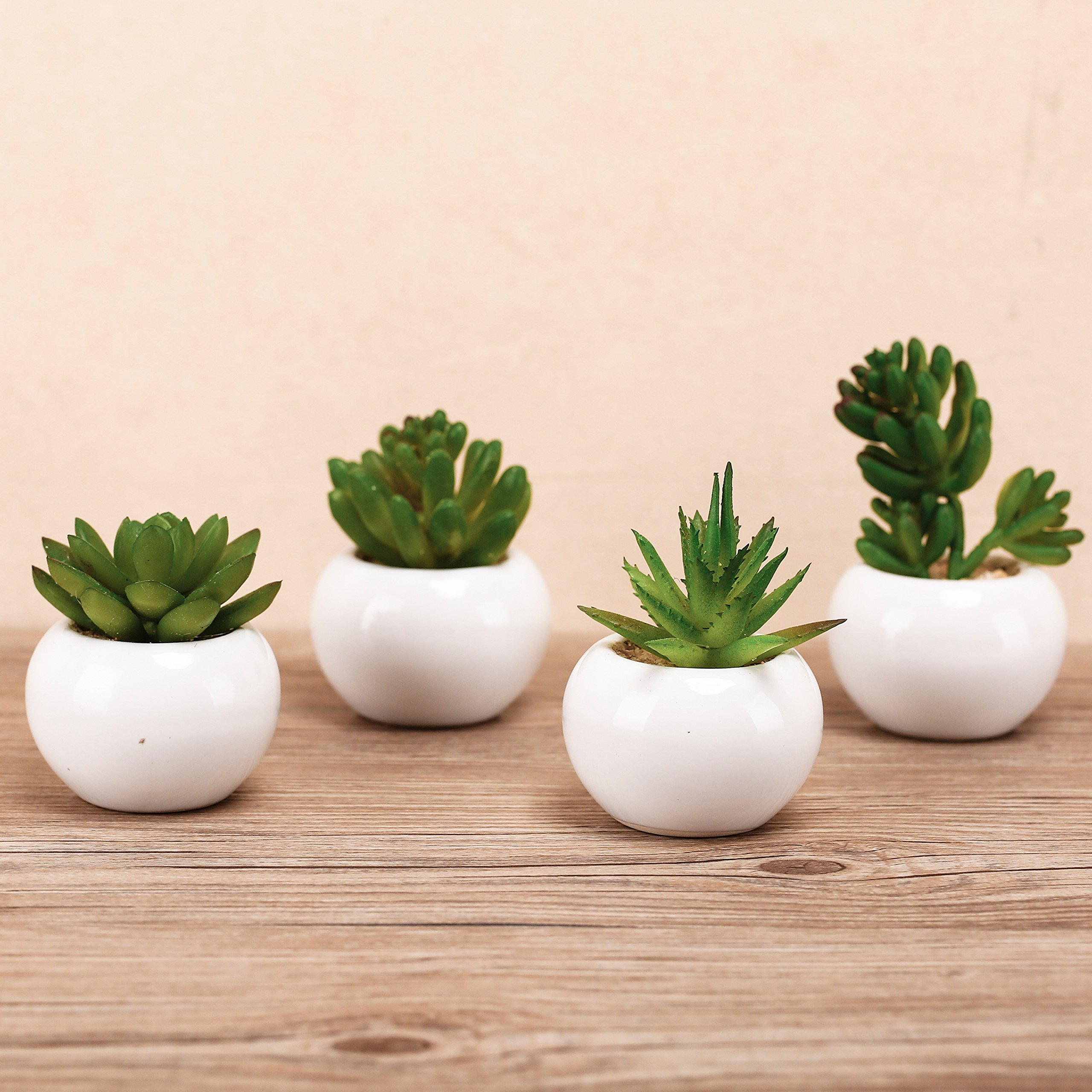 3-inch Mixed Green Artificial Succulent Plants in Round Glazed White Ceramic Pots, Set of 4 by MyGift (Image #2)