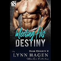 Meeting His Destiny [Dark Knights 2] (Siren Publishing The Lynn Hagen ManLove Collection) (English Edition)
