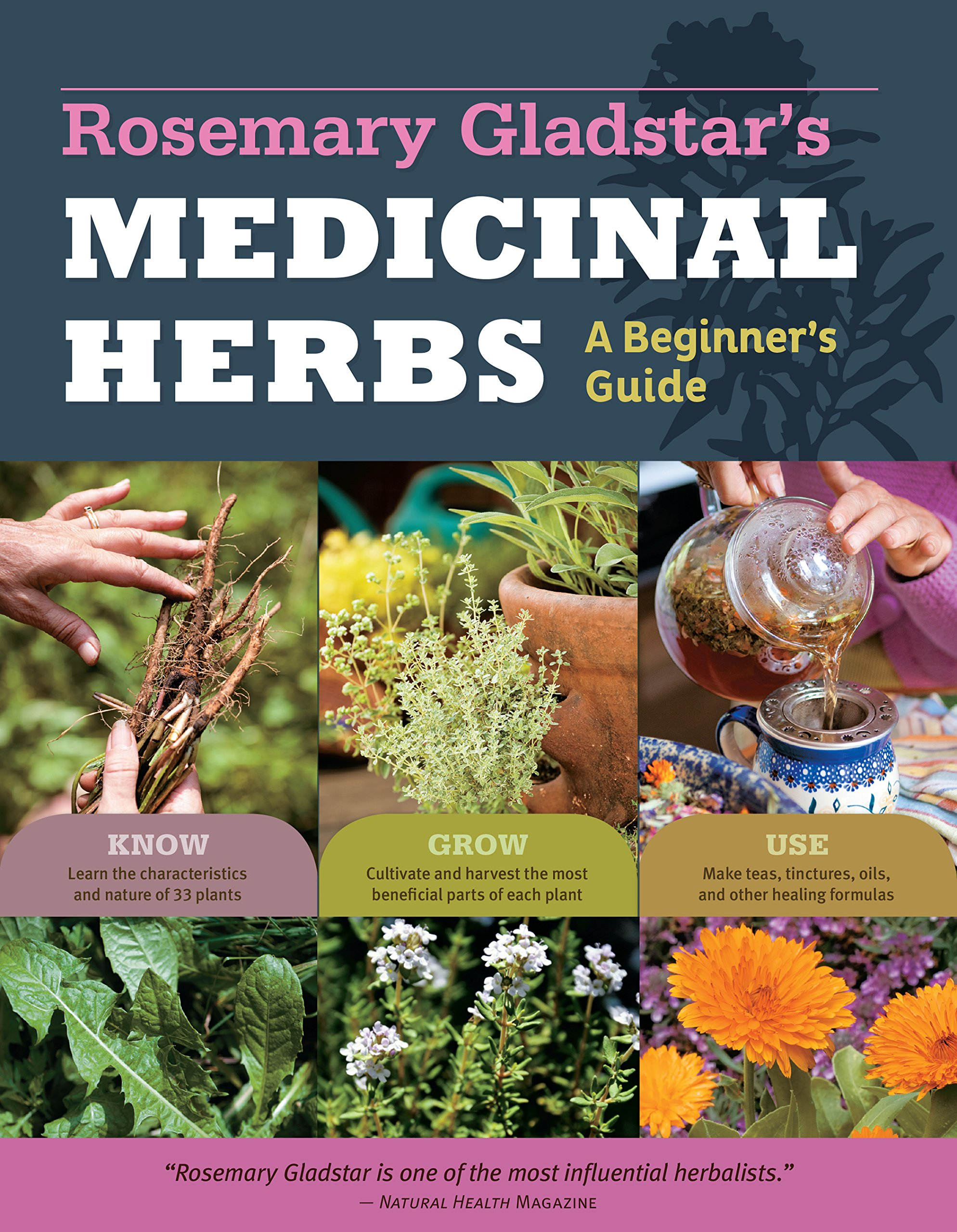 Guide To Natural Remedies For Health And Wellbeing Pdf