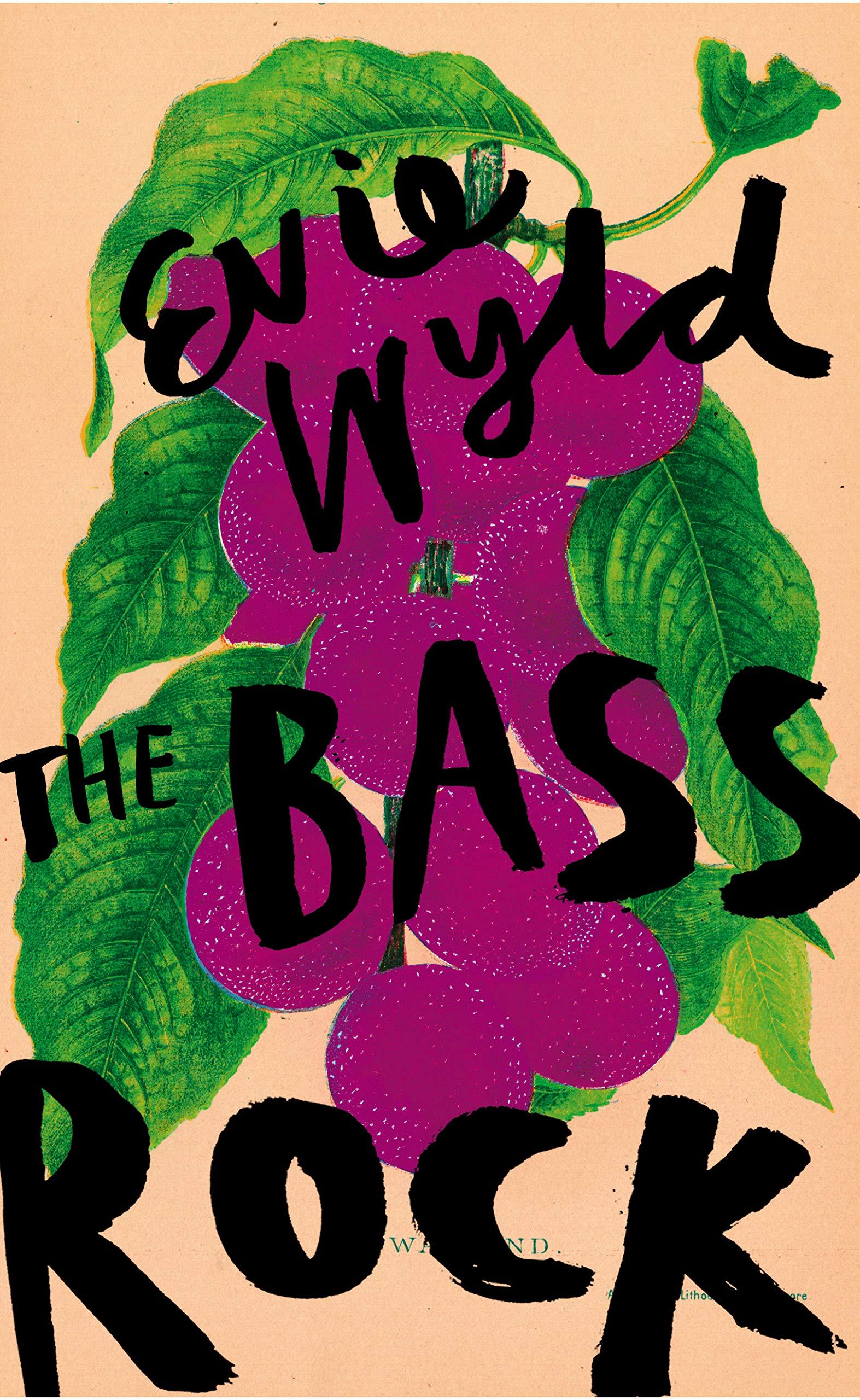 The Bass Rock: Amazon.co.uk: Wyld, Evie: 9781911214397: Books