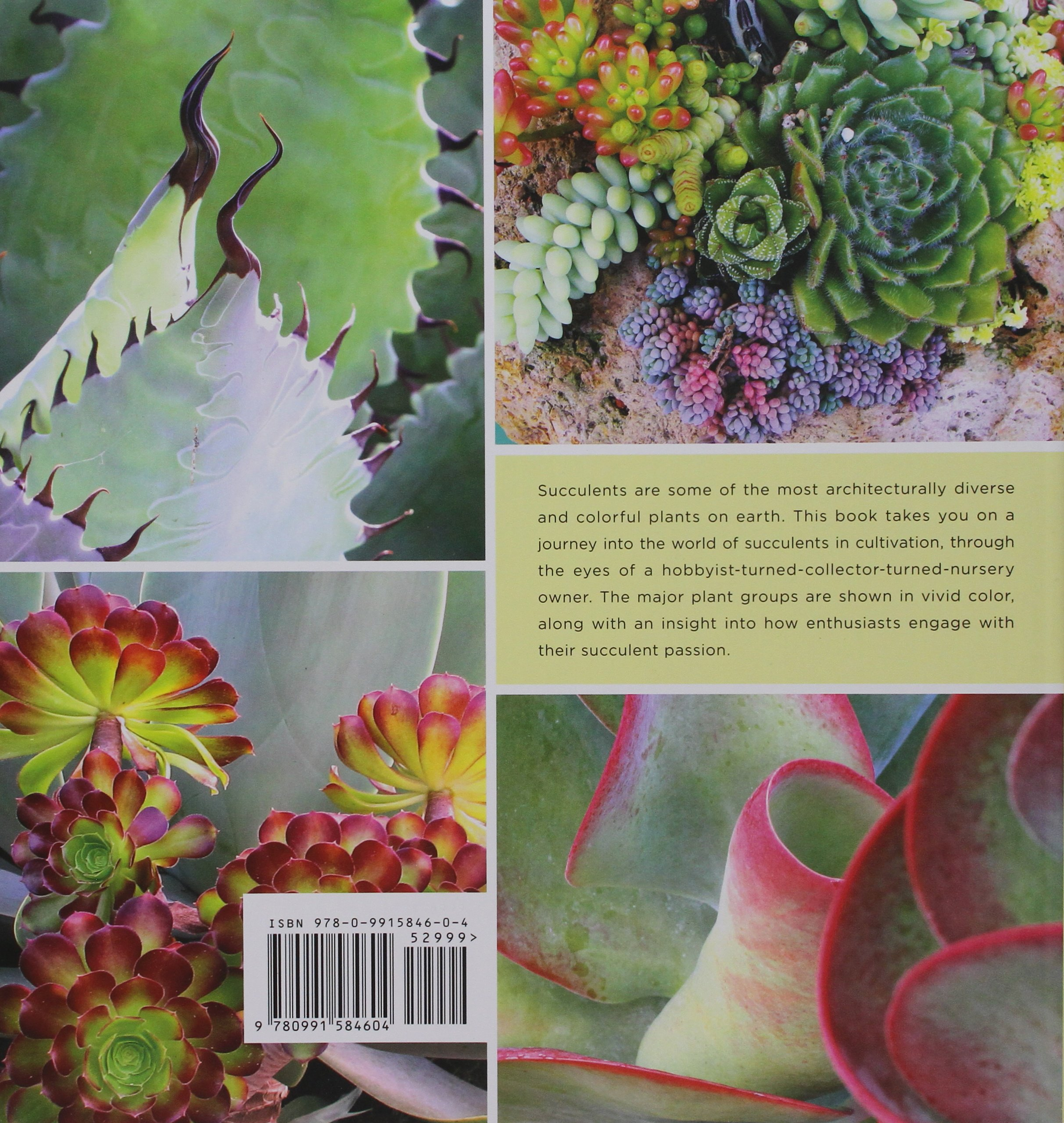 Under the Spell of Succulents: A Sampler of the Diversity of Succulents in Cultivation by Sunbelt Publications (Image #2)