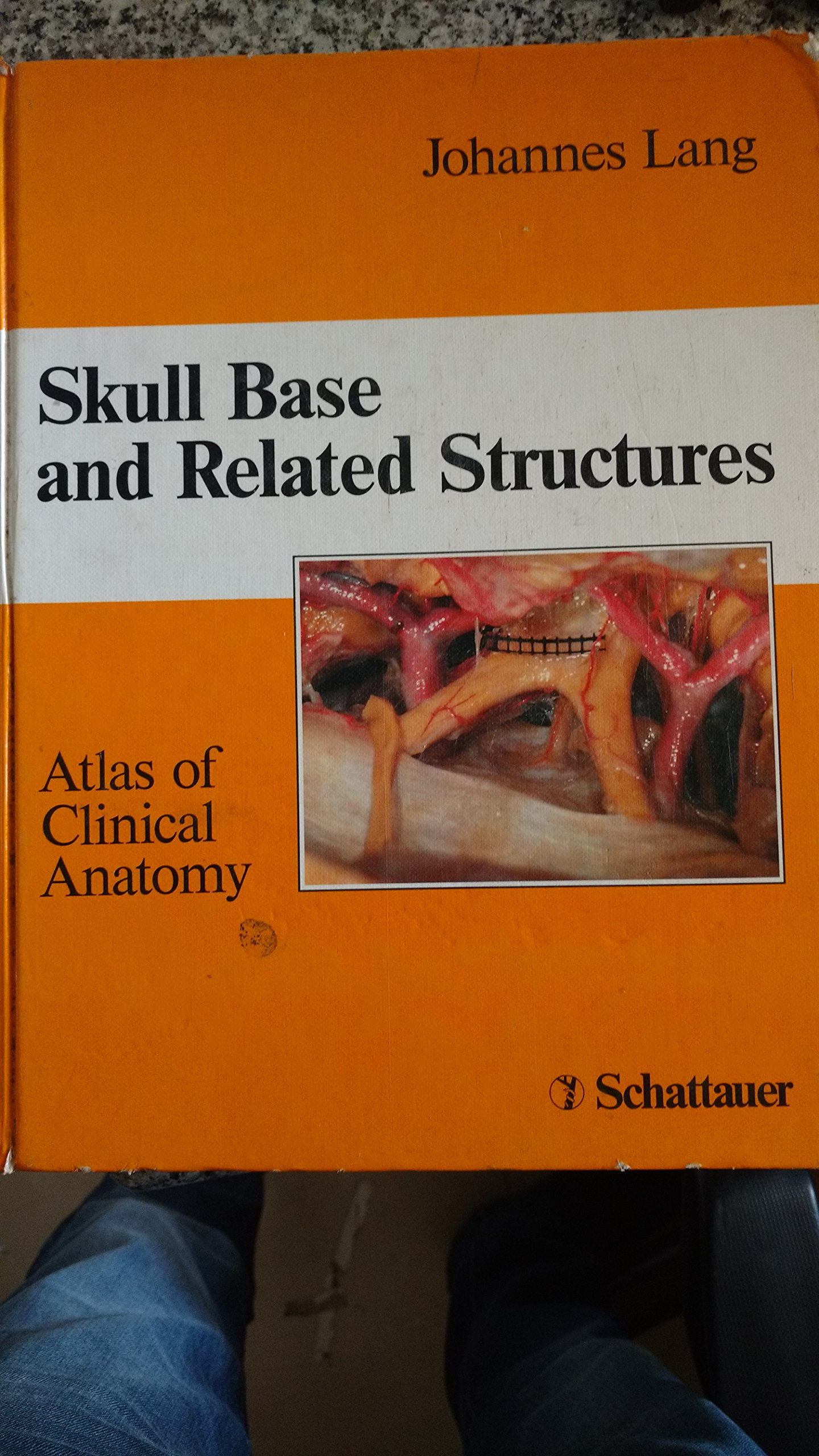 Skull Base of Related Structures: Atlas of Clinical Anatomy: Amazon ...