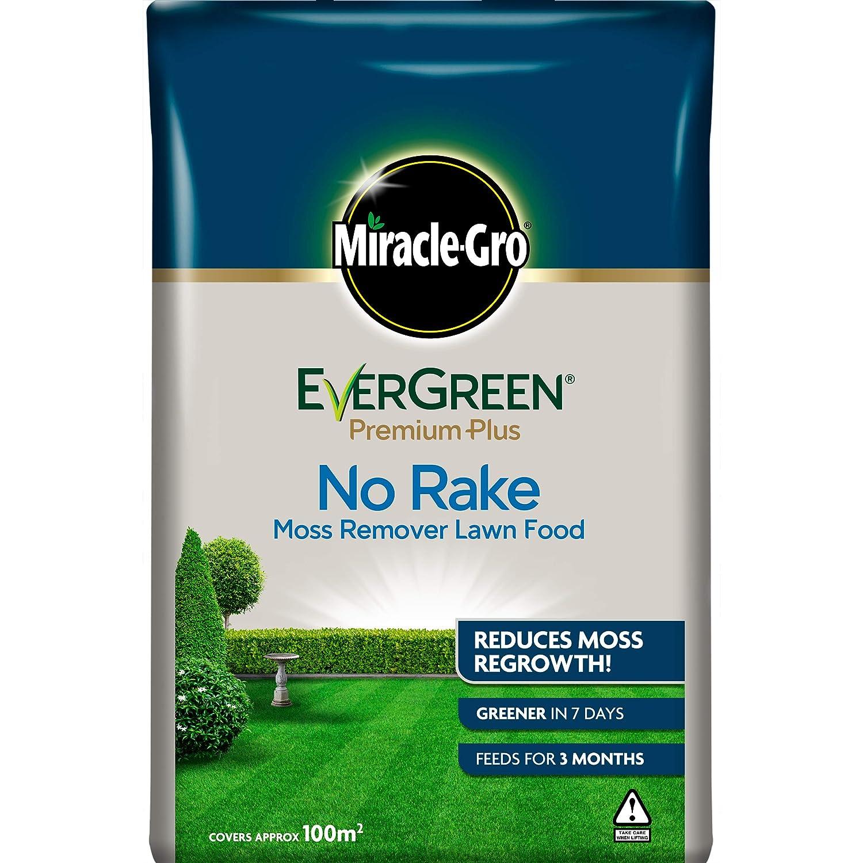 Evergreen Premium Plus Aucun R/âteau Vert 50sqm Green
