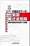 中国经济下一步:繁荣还是陷阱:观察中国经济未来的15个维度