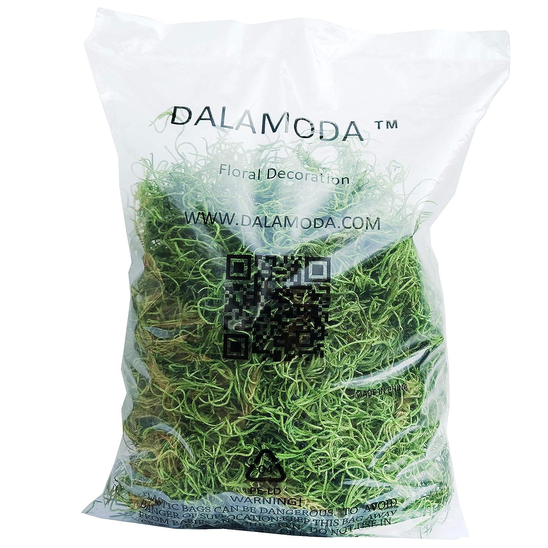 Mint Reindeer Moss Preserved Floral Moss Mint 2.5oz