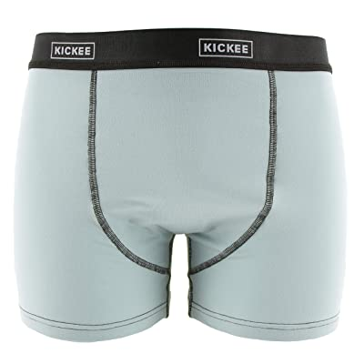 KicKee Menswear Solid Boxer Brief in Spring Sky with Zebra, S at Men's Clothing store