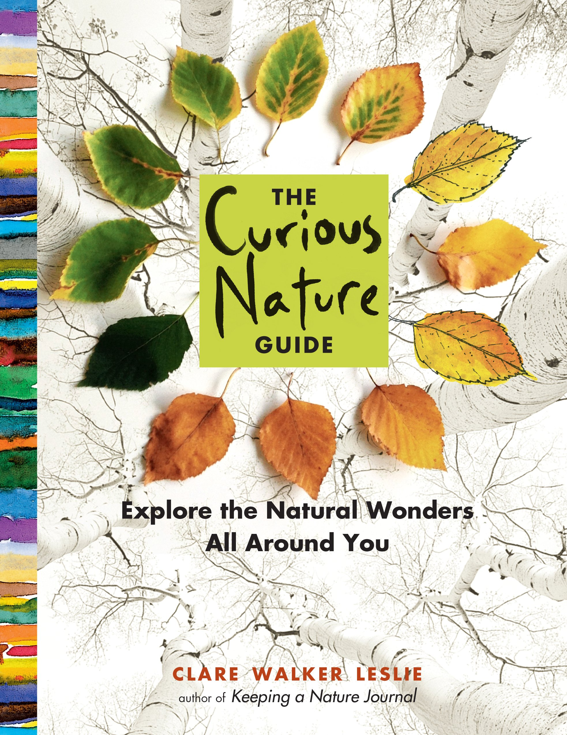 The Curious Nature Guide Explore Natural Wonders All Around You