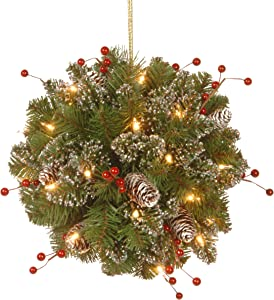 National Tree Company Pre-lit Artificial Christmas Kissing Ball | Flocked with Mixed Decorations and LED Lights | Glittery Mountain Spruce - 12 Inch