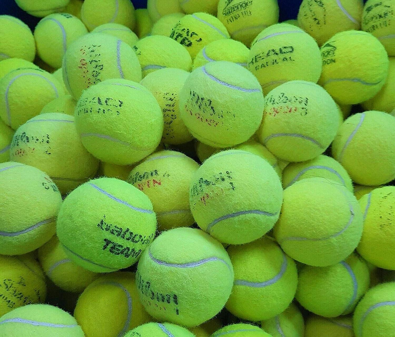 Ace Tennis Balls 50 Pelotas de Tenis usadas para Perros de ...