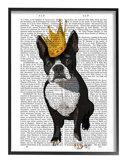 Buy Stupell Home Décor Classic Novel Royal Terrier Puppy