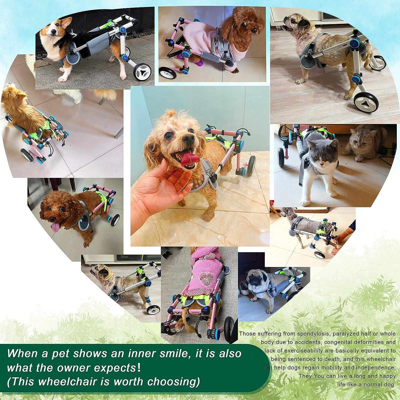 Pet Supplies Exercise Wheels alpha-grp.co.jp Assist Small Pets ...