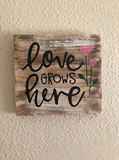 Amazon Com Susie85electra Love Sign Love Grows Here Home Decor