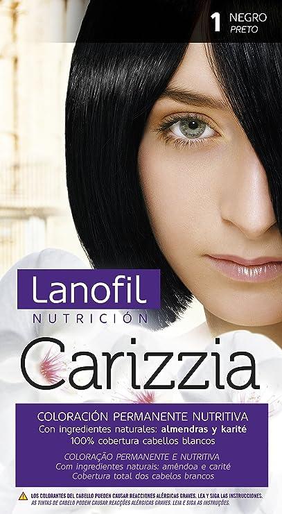 Revlon Lanofil Carizzia Tinte - Cuidado capilar, color 6,41 ...