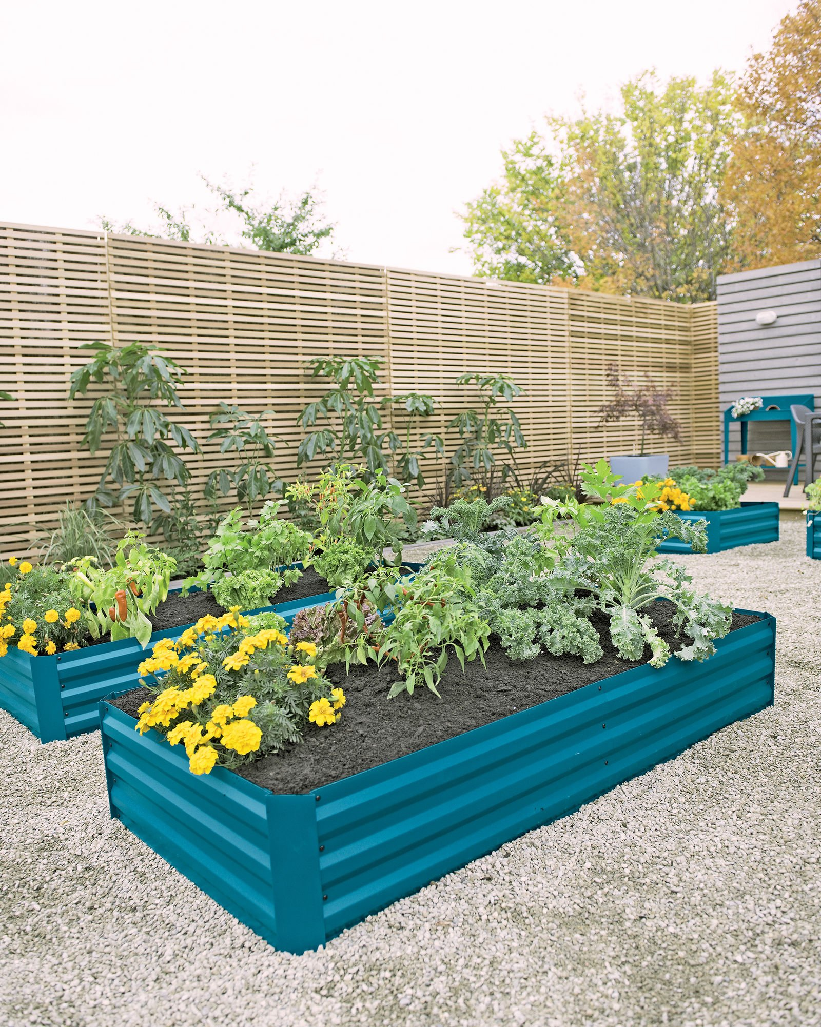 """Gardener's Supply Company Corrugated Metal Powder-Coated Steel Raised Bed, 34"""" x 68"""" Blue 3 STYLISH and STURDY- Richly hued raised bed made from sturdy yet lightweight powder-coated steel complements your landscape and showcases plants. BENEFITS- Extra deep to accommodate large plants. Lightly textured surface. Raised beds are easier to plant and tend than in-ground beds, with fewer pests and weeds. MATERIALS and MEASUREMENTS- Powder-coated steel - 68"""" L x 35-1/4"""" W x 11-3/4"""" H - Holds 17 cu. ft. of soil"""