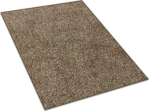 Koeckritz 8 x10 Chocolate Chip Area Rug Carpet with Multiple Sizes and Shapes Available