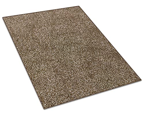 Koeckritz 6 x9 Chocolate Chip Area Rug Carpet with Multiple Sizes and Shapes Available