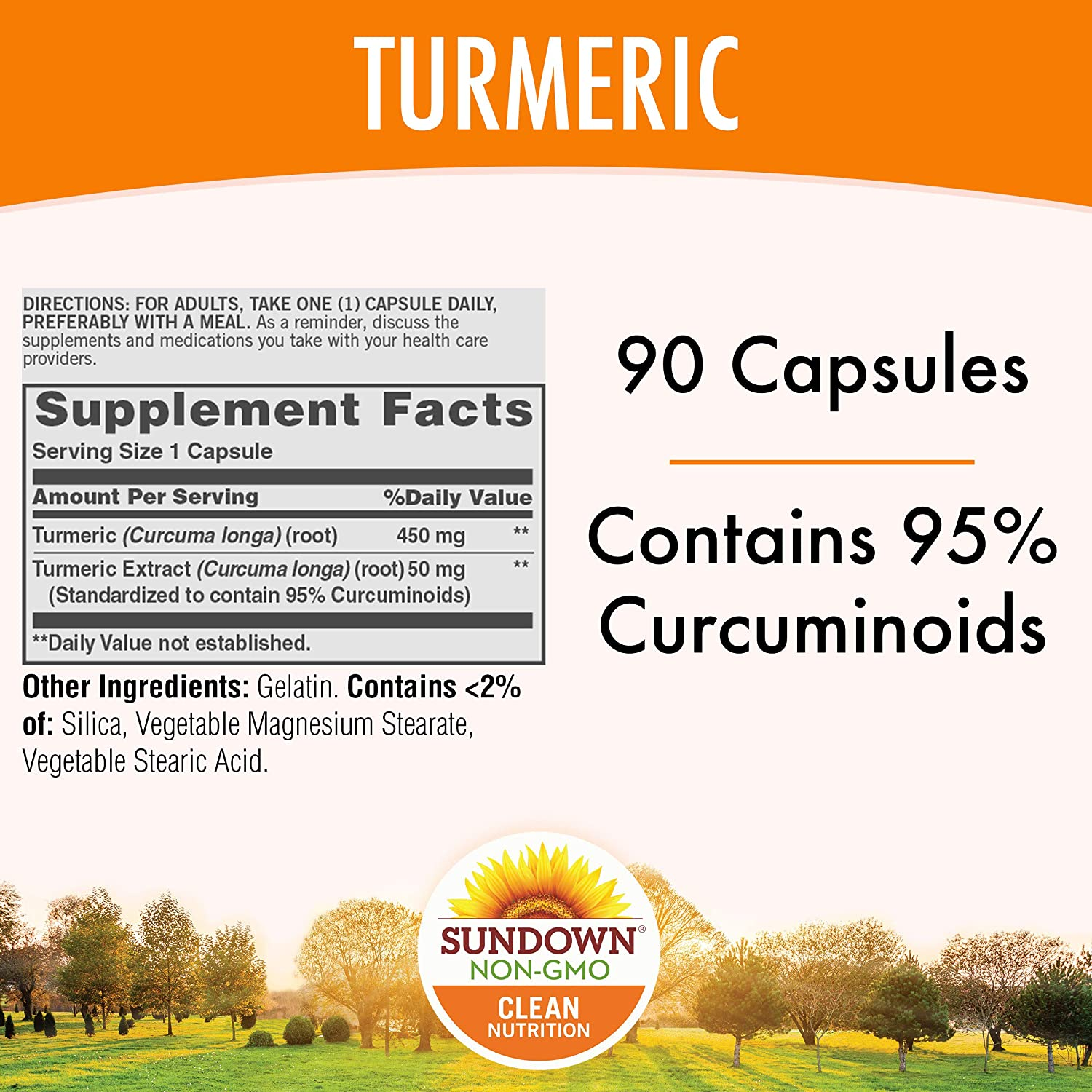 Turmeric Supplements by Sundown, for Antioxidant Health, Standardized Turmeric Extract, Non-GMOˆ, Free of Gluten, Dairy, Artificial Flavors, 500 mg, 90 Capsules: Health & Personal Care